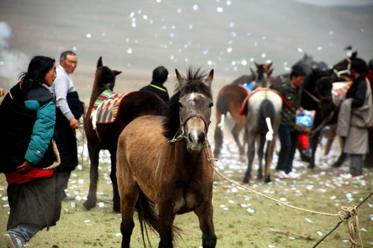 China - Gansu 318 - Xiahe area