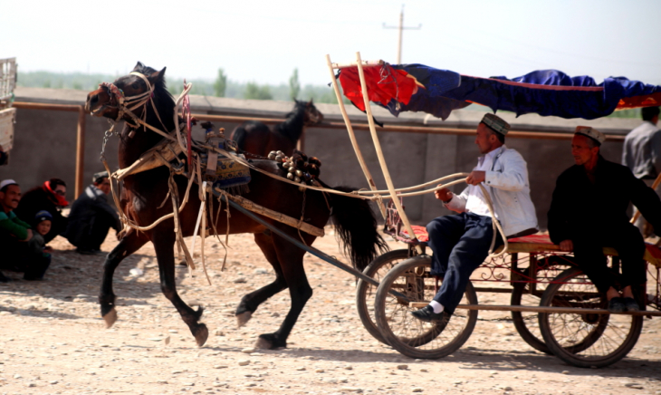 China - Xinjiang 322 - Kashgar - Sunday animal market