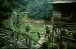 Malaysia - Borneo, journey to the Iban tribe 032