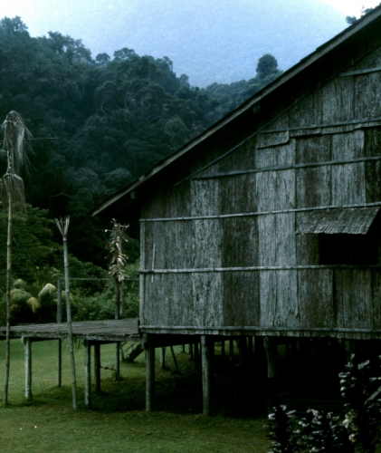 Malaysia - Borneo, journey to the Iban tribe 003