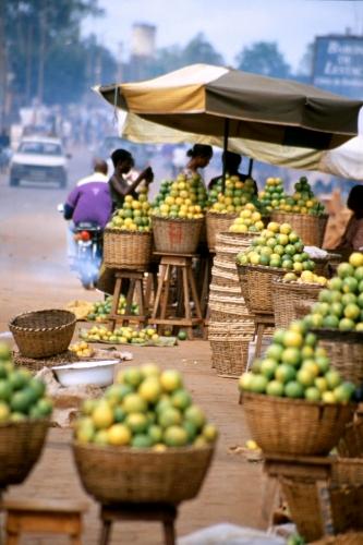 Benin - Abomey 12