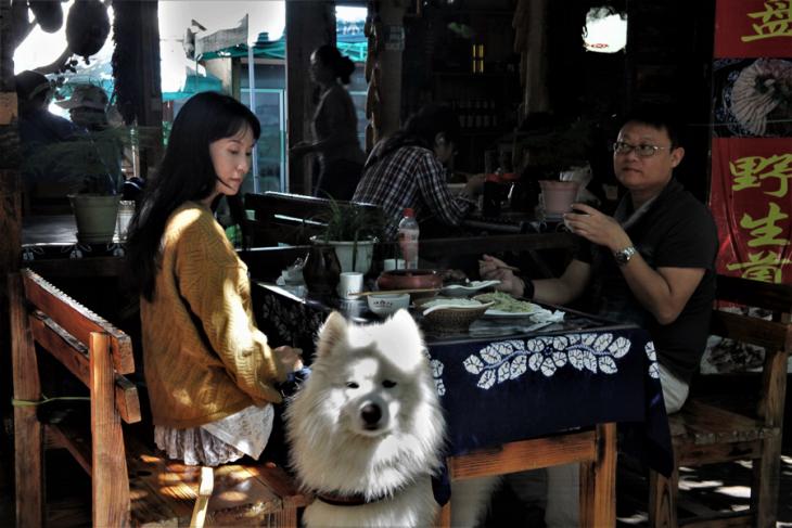 China - Yunnan 525 - Shaxi