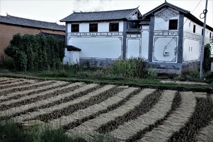 China - Yunnan 589 - Shaxi surroundings