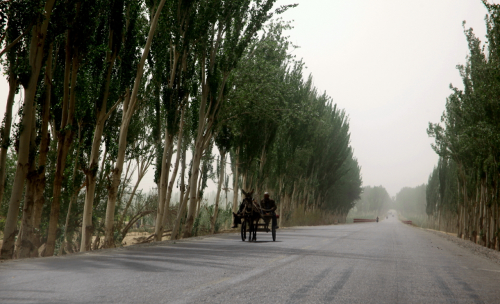China - Xinjiang 623 - On the road to Hotan