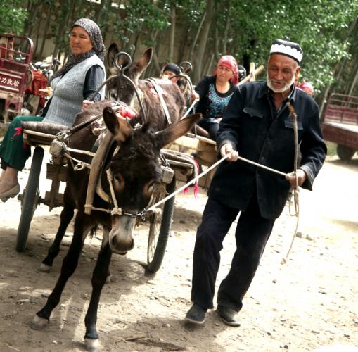 China - Xinjiang 624 - On the road to Hotan
