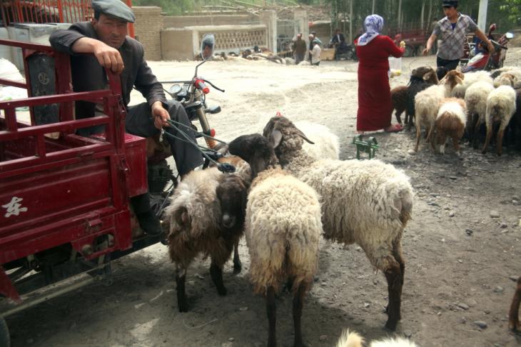 China - Xinjiang 626 - On the road to Hotan