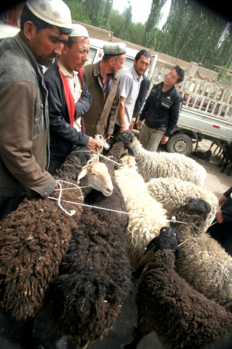 China - Xinjiang 627 - On the road to Hotan