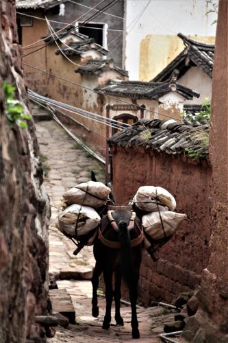 China - Yunnan 636 - Nuodeng