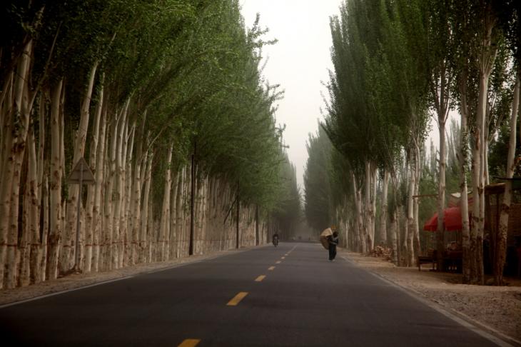 China - Xinjiang 649 - Hotan