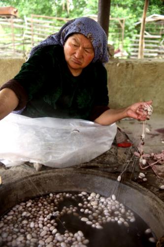 China - Xinjiang 652 - Hotan