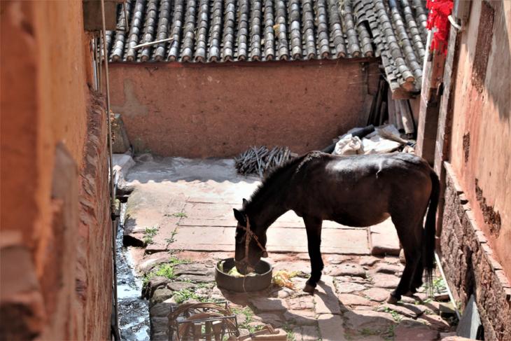 China - Yunnan 657 - Nuodeng