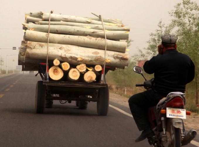 China - Xinjiang 713 - On the road to Kuche