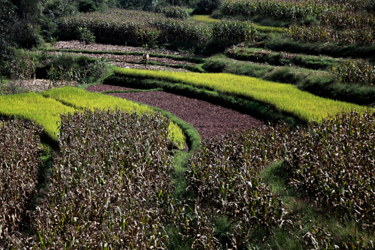China - Yunnan 751 - Dali surroundings