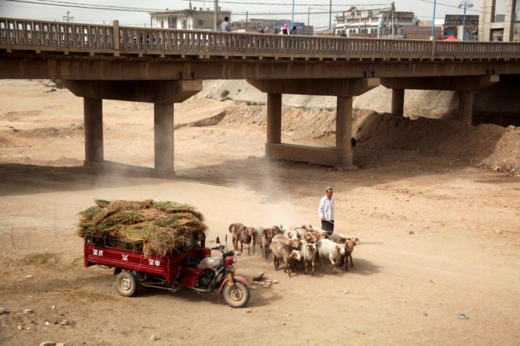 China - Xinjiang 753 - Kuche