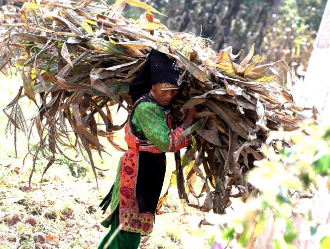 China - Yunnan 756 - Dali surroundings - Yi village