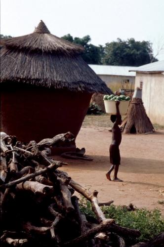 Benin 26 - On the road to Natitingou