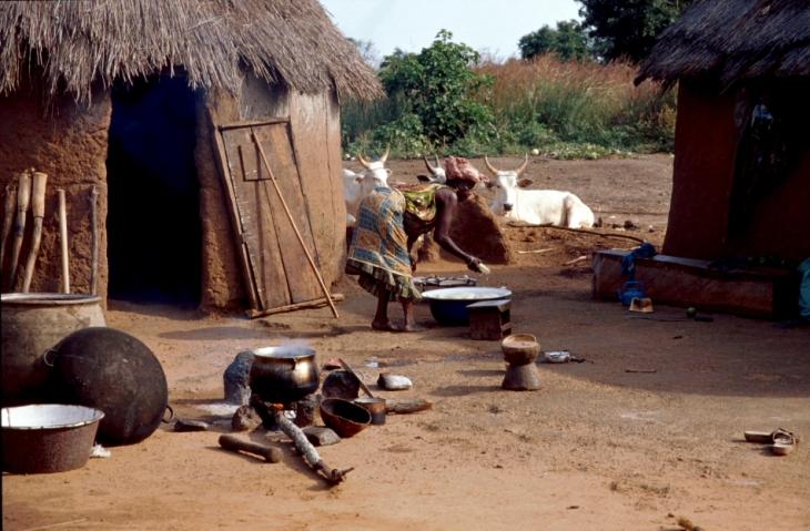 Benin 29 - On the road to Natitingou