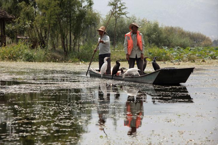 China - Yunnan 886 - Dali surroundings - Xihu lake