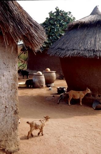 Benin 33 - On the road to Natitingou