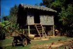 Cambodia last