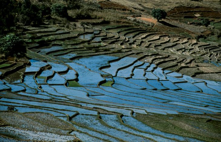 Madagascar - Central Highlands 085