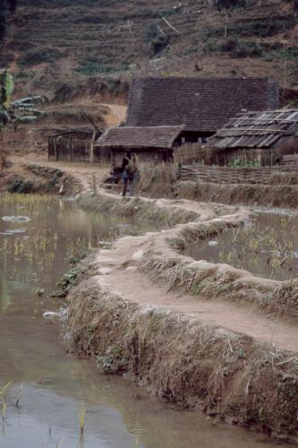 Vietnam - Northern ethnic minorities 009 - Sapa area