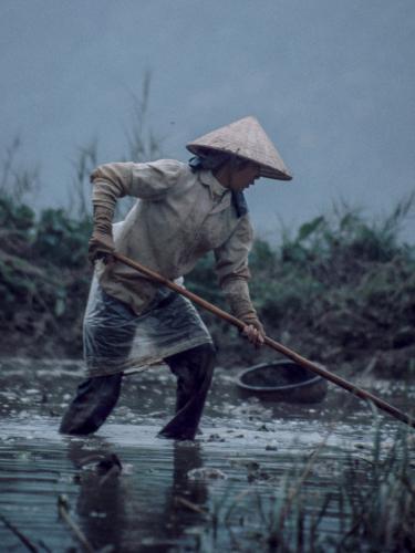 Vietnam - Tam Coc 005