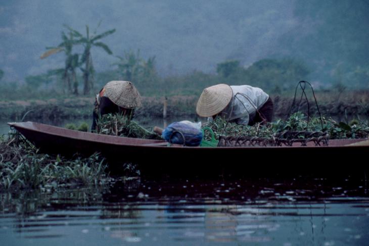 Vietnam - Tam Coc 006