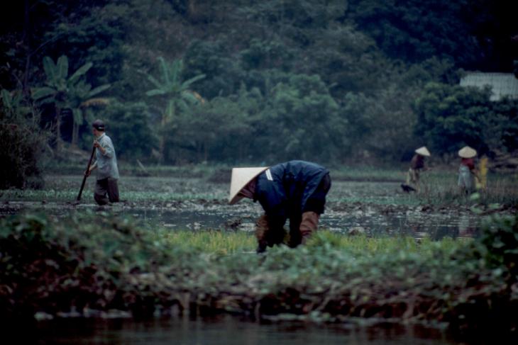 Vietnam - Tam Coc 007