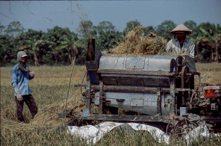 Vietnam - Mekong Delta 105