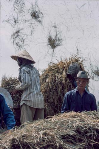 Vietnam - Mekong Delta 111