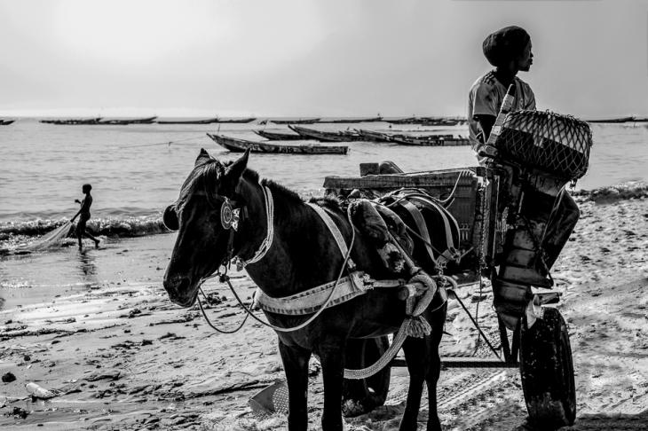 Senegal - M'bour 031