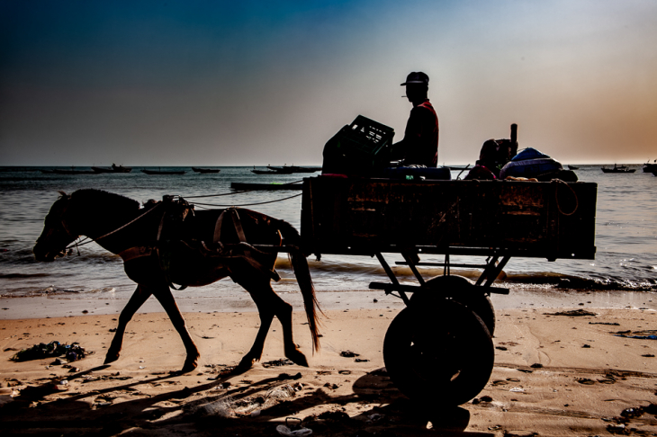 Senegal - M'bour 050