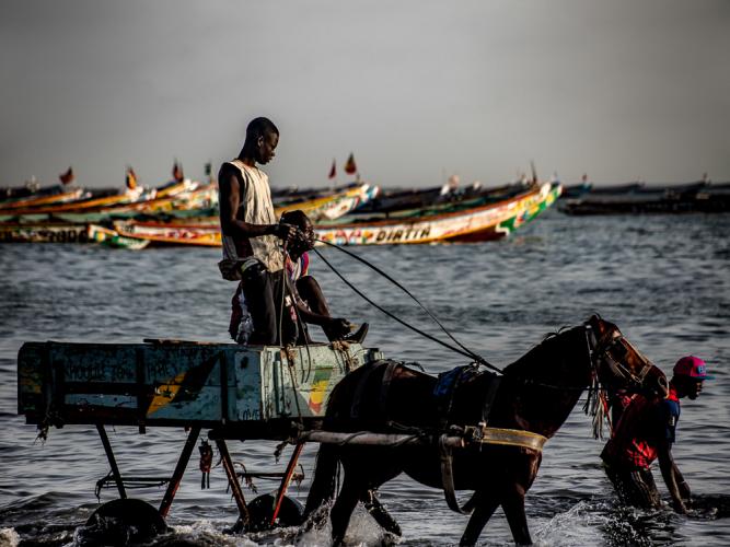 Senegal - Joal-Fadiouth 095 - Joal
