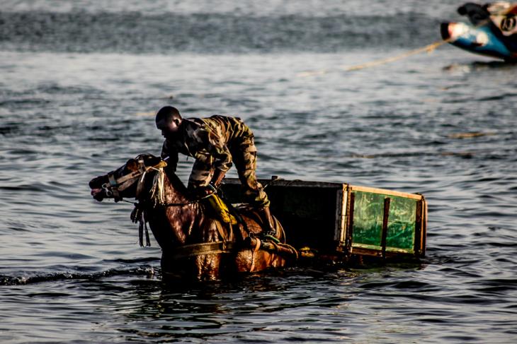 Senegal - Joal-Fadiouth 105 - Joal