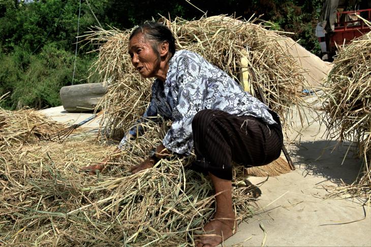 China - Yunnan 053 - Baxin