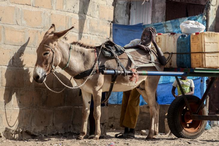 Senegal - N' Dangane 066