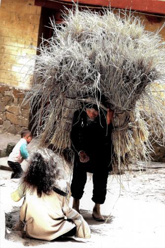 China - Yunnan 119 - Yuanyang - Hani village