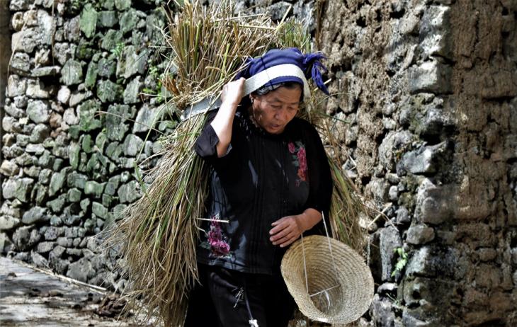 China - Yunnan 133 - Yuanyang - Hani village