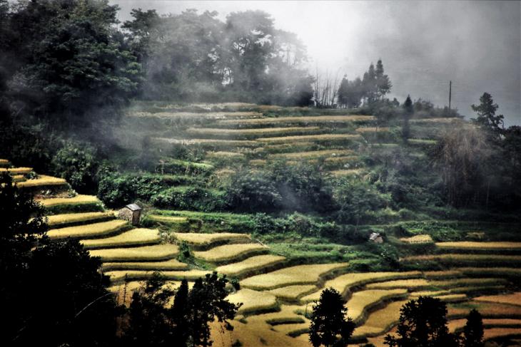 China - Yunnan 140 - Yuanyang