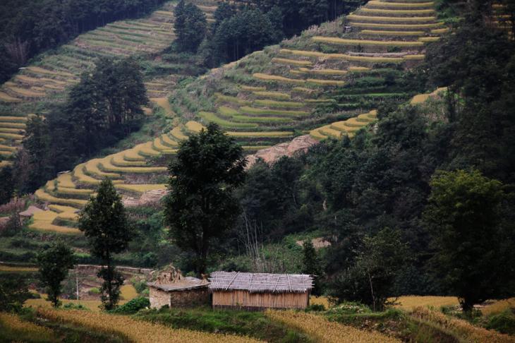 China - Yunnan 141 - Yuanyang