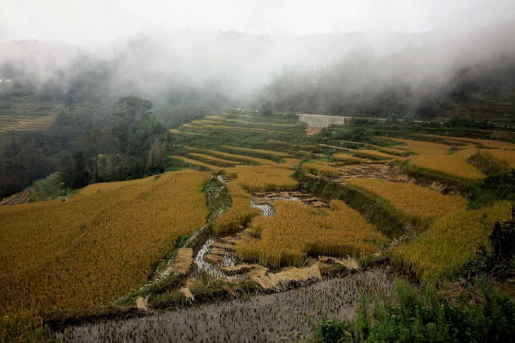 China - Yunnan 142 - Yuanyang