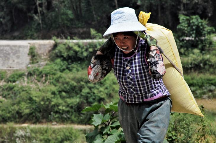 China - Yunnan 145 - Yuanyang