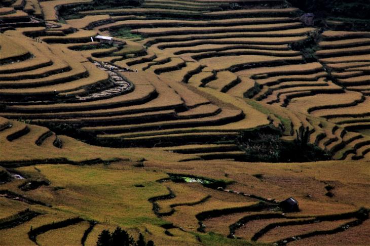 China - Yunnan 148 - Yuanyang