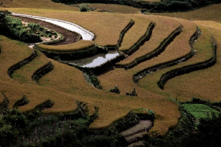 China - Yunnan 149 - Yuanyang