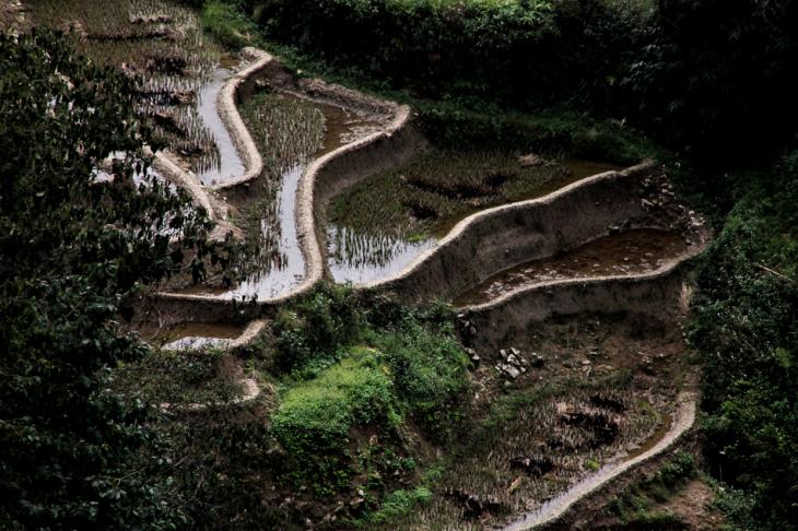 China - Yunnan 151 - Yuanyang