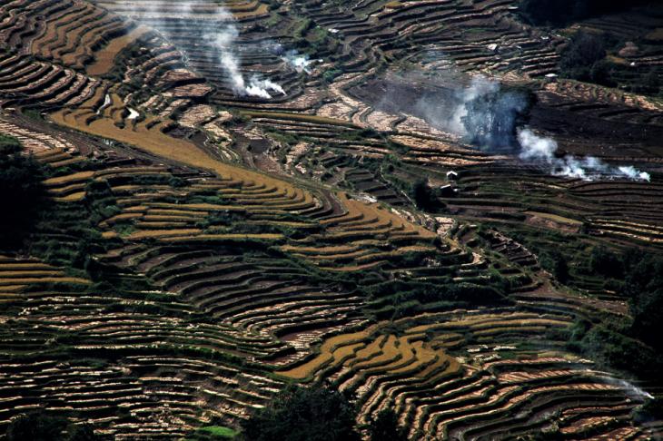 China - Yunnan 155 - Yuanyang