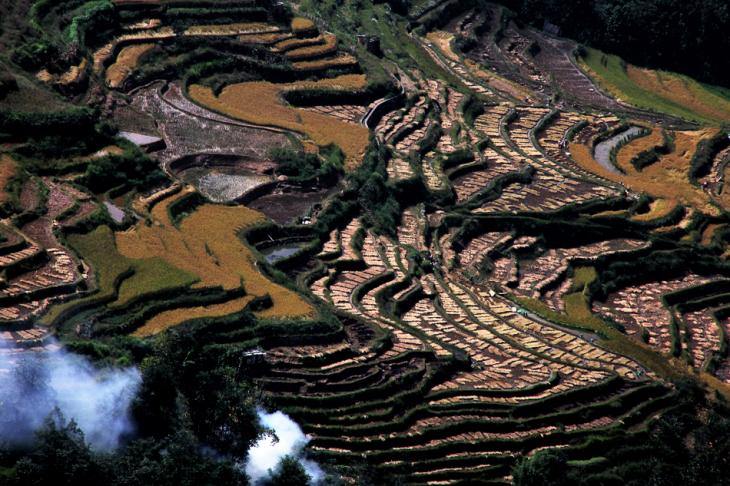 China - Yunnan 156 - Yuanyang
