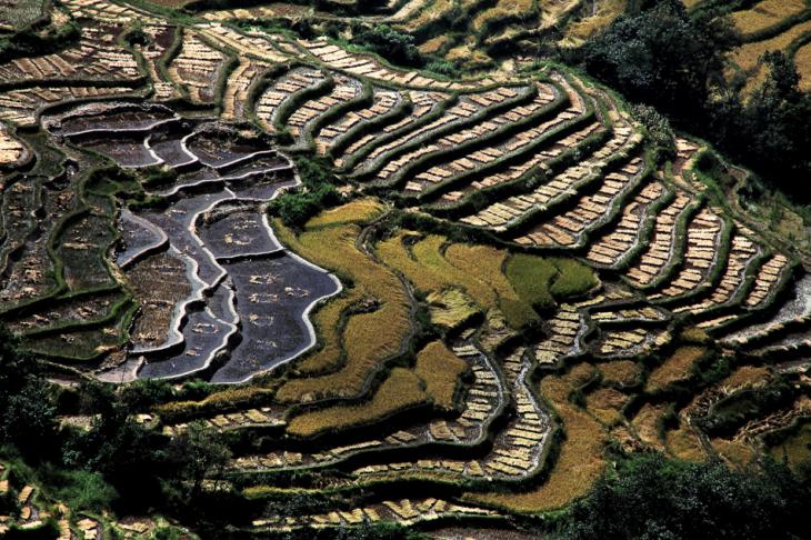 China - Yunnan 157 - Yuanyang