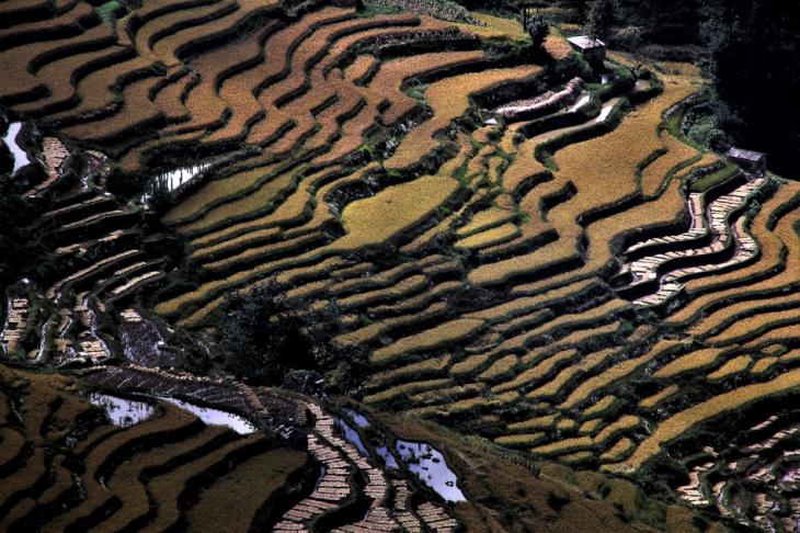 China - Yunnan 158 - Yuanyang